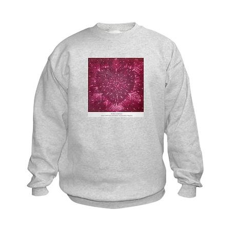 ROSE COMPASS Kids Sweatshirt