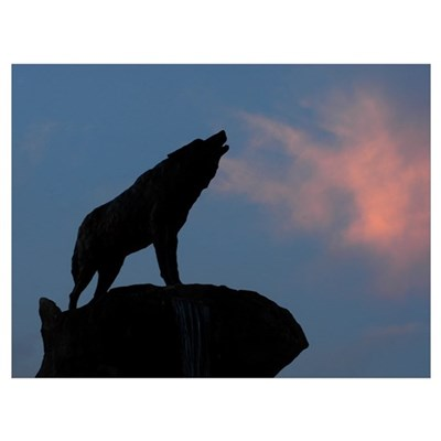 NC State University Pictures Howl at Sunset Poster