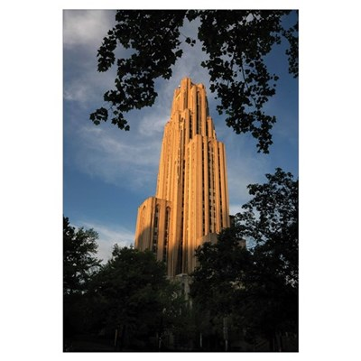 Pitt Pictures Leaves Frame the Cathedral Canvas Art