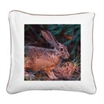 Blacktailed Jackrabbit Square Canvas Pillo