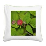 Wild Raspberry Square Canvas Pillo