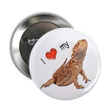 I luv my Bearded Dragon Button