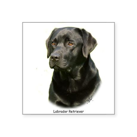 Labrador Retriever 9A054D-23a Sticker