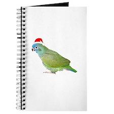 Blue Headed Pionus in Santa Hat Journal