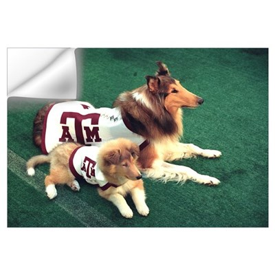 Texas A and M Pictures Reveille and Trainee Wall Decal