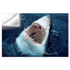 Great White Shark (Carcharodon carcharias) at surf Wall Decal
