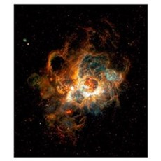 Hubble Space Telescope view of nebula NGC 604 Poster