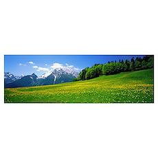 Springtime Bavarian Alps Germany Poster