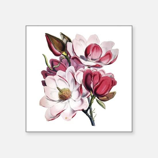 "Pink Magnolia Flowers Square Sticker 3"" x 3"""