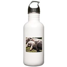 Sleepy Time Water Bottle