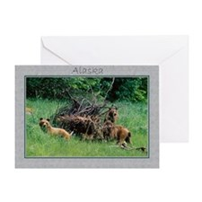 Alaska Brown Bear Cubs Greeting Card