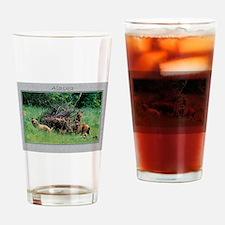 Alaska Brown Bear Cubs Drinking Glass