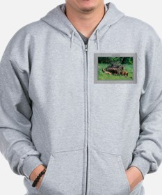 Alaska Brown Bear Cubs Zip Hoodie