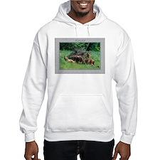 Alaska Brown Bear Cubs Hoodie