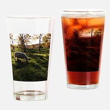 Long Shadows Drinking Glass