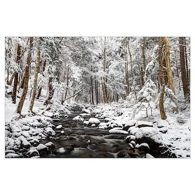 Stream in winter, Nova Scotia, Canada Poster