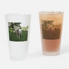Funny Face Drinking Glass