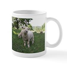 Funny Face Mug