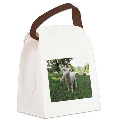 Funny Face Canvas Lunch Bag