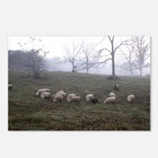 Misty Morning Postcards (Package of 8)