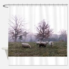 Late Fall Shower Curtain