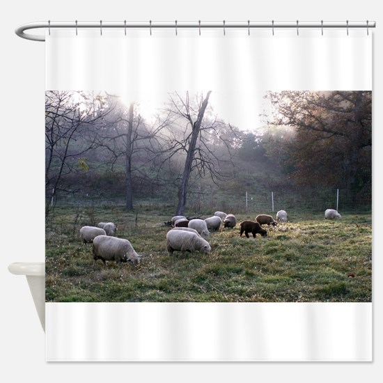 Early Risers Shower Curtain