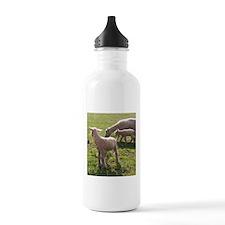 First Steps Away Water Bottle