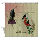 Vintage French Hummingbirds Shower Curtain