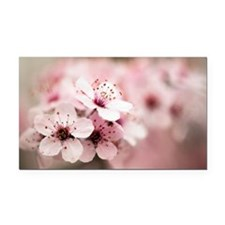 Cherry Plum (Prunus ceracifera) - Car Magnet