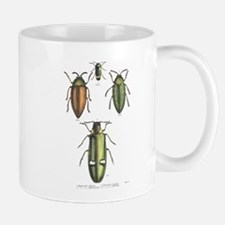 Beetle Insects Mug