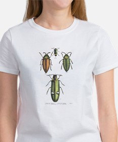 Beetle Insects (Front) Women's T-Shirt