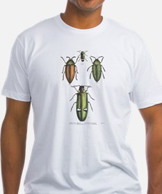 Beetle Insects (Front) Shirt