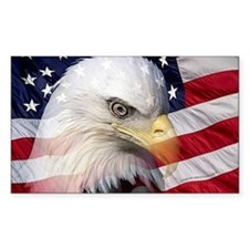 American Pride Decal