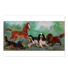 Unique Horse play Postcards (Package of 8)