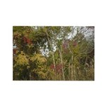 Fall Trees Photography Rectangle Magnet