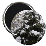 Winter Wonderland Photography Magnet