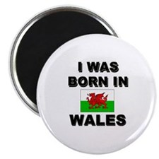 I Was Born In Wales Magnet
