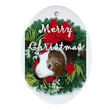 Guinea Pig Christmas Oval Ornament