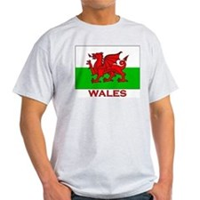Wales Flag Gear Ash Grey T-Shirt
