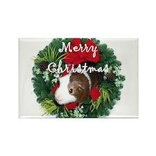 Funny Guinea pig Rectangle Magnet (10 pack)