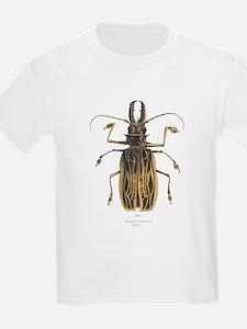 Brazilian Prionus Beetle (Front) Kids T-Shirt