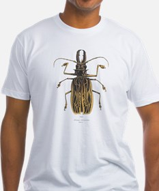 Brazilian Prionus Beetle (Front) Shirt