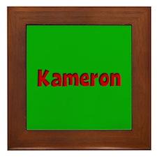Kameron Green and Red Framed Tile