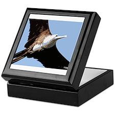 Frigatebird.jpg Keepsake Box