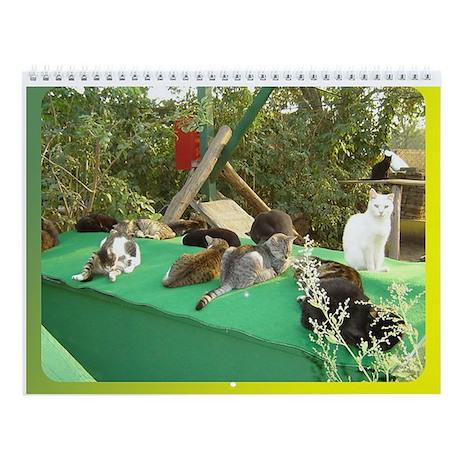 Cat Shelter Felix Wall Calendar