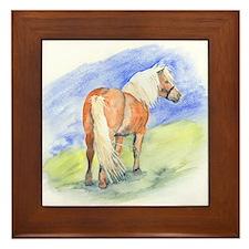 Pony.jpg Framed Tile