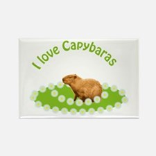 I love Capybaras Rectangle Magnet (100 pack)