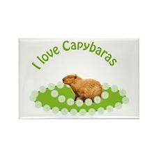 I love Capybaras Rectangle Magnet