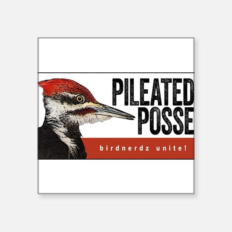 "Pileated Posse Square Sticker 3"" x 3"""