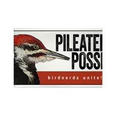 Pileated Posse Rectangle Magnet